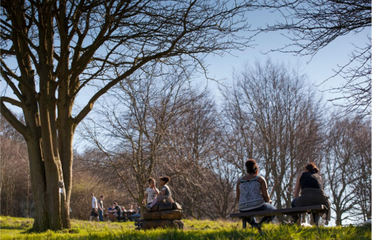 Photograph outside showing trees, grass and sunshine and people sat with their backs to the camera on bench talking to each other.
